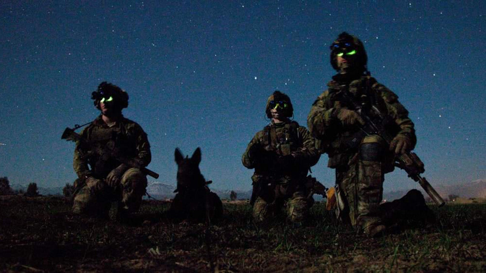 Group Of Dog Army Awesome Wallpapers
