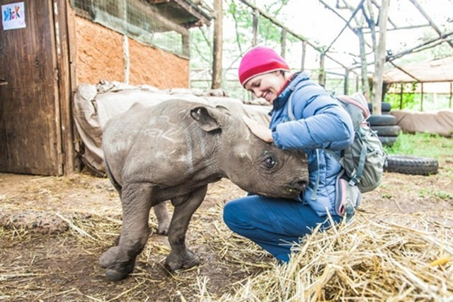 How to take care of a blind baby rhino