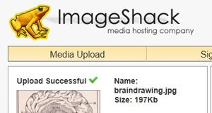 Five Best Services for Quick Image Sharing