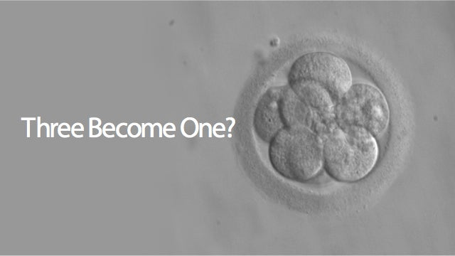 The FDA Is Considering Creating Three-Person Embryos