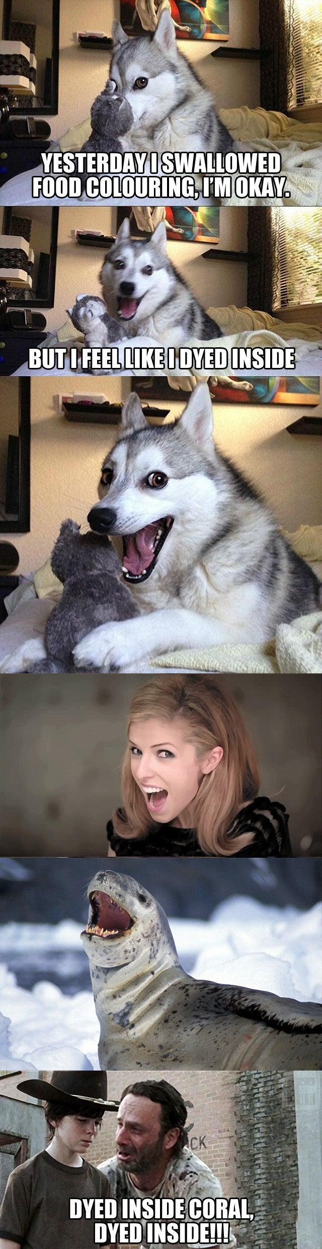 Bad Pun Dog Anna Kendrick - More information