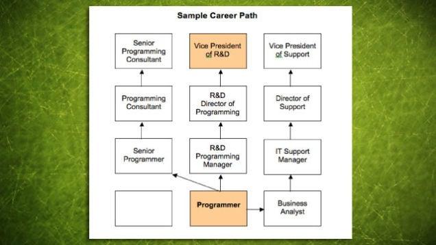 MBTI� Career Report - CPP