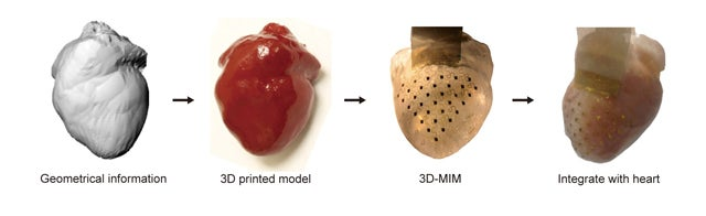 Revolutionary membrane can keep your heart beating perfectly forever