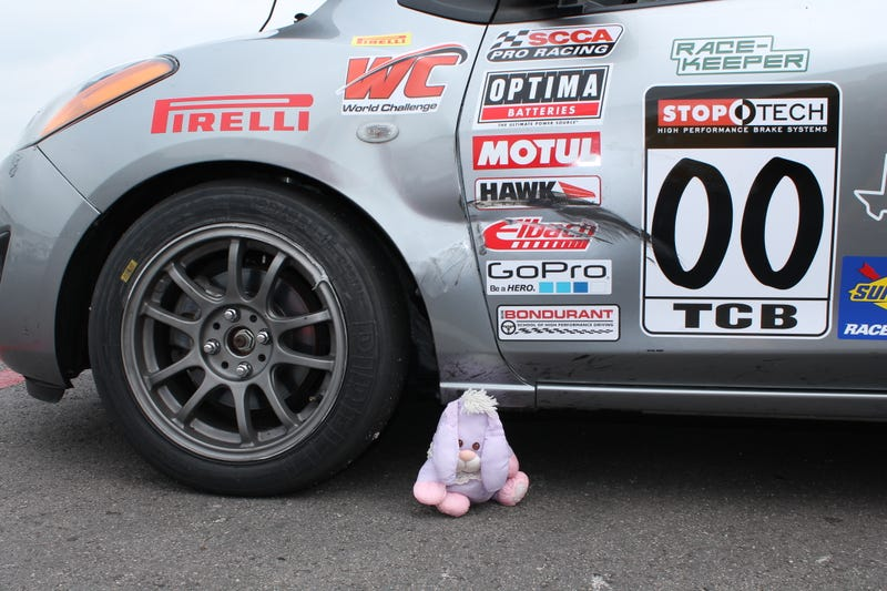Fluffy Bunny and the Most Last-Minute World Challenge Entry Ever