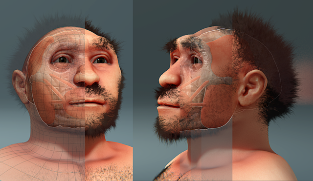 The Bizarre Disappearance of the Peking Man Fossil