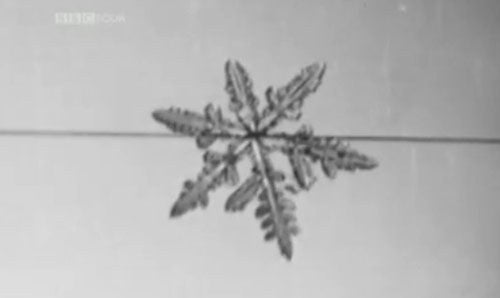 Watch Man Grow Snowflakes for the First Time