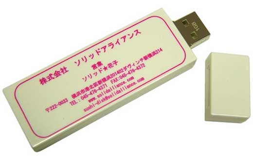 USB Business Card is Just so Practical
