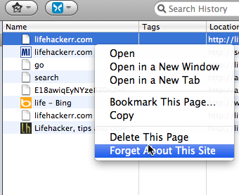 Remove a Single Site from Firefox History