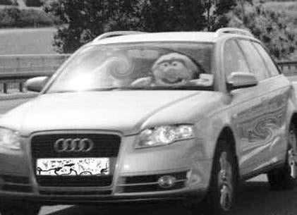 The Muppets' Animal Caught Speeding, Driving Police Crazy