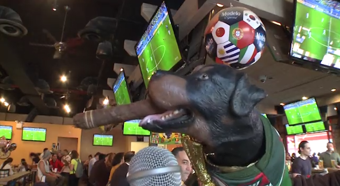 Triumph the Insult Comic Dog Ends His World Cup Coverage in Brazil