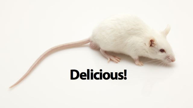 Why You'd Never Know There Was A Mouse In Your Soda