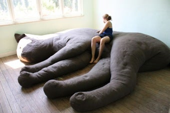 The Kitty Couch: A Cat Lady's Dream Come True