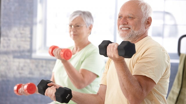 Lifting weights slows down memory loss