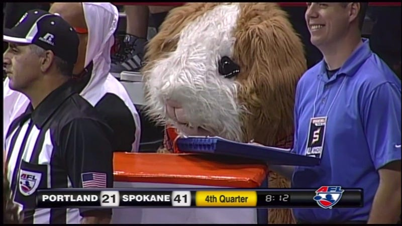 Is This The Saddest Mascot?