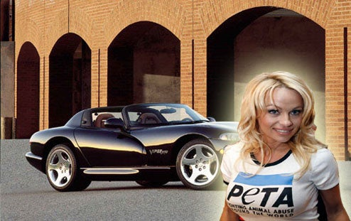 Pam Anderson Sacrifices Viper For Animal Ethics