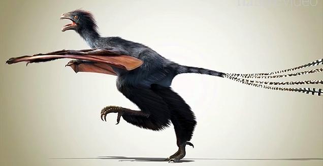 Hallan un nuevo dinosaurio con un tipo de alas desconocidas hasta ahora 1234128993480302255