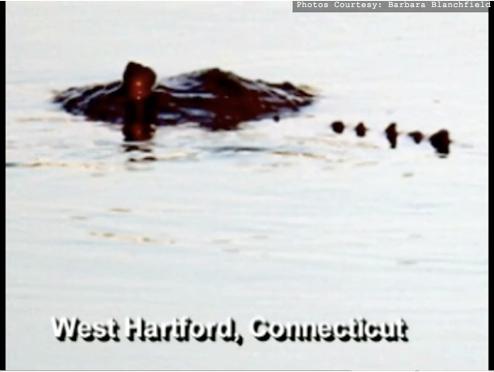 New Monster Terrorizes Hartford