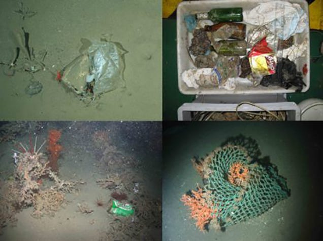 There's Garbage in the Deepest, Most Remote Parts of the Ocean
