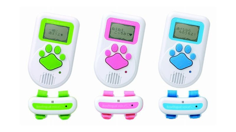 7 Tools to Turn Your Dog Into a Pet of the Future
