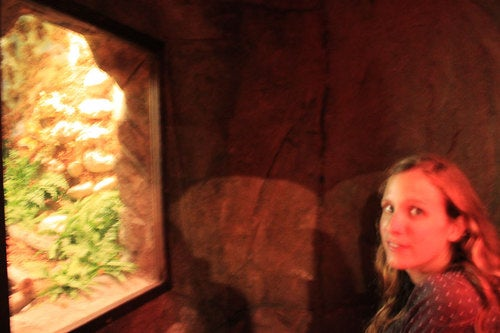 Visit Clifton's Cafeteria and step back in time to the birthplace of pulp science fiction