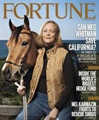 Meg Whitman's Business Plan to Become California Governor Makes No Sense