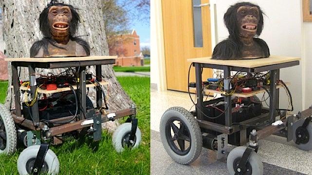 A Kickstarter project to build bonobos their own horrifying ape robots