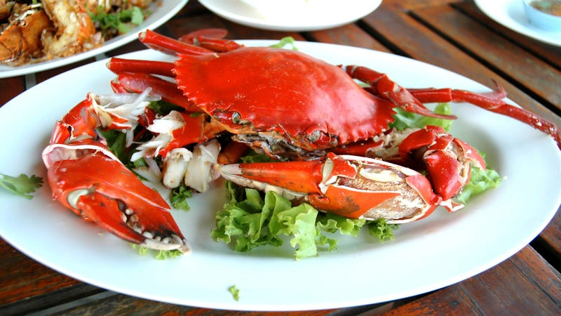 New Study Suggests Crustaceans Actually Do Feel Pain—Delicious, Delicious Pain
