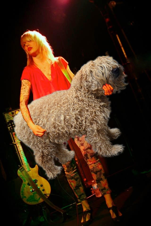 These Bass Players Look Like They're Petting Dogs, And It's Amazing