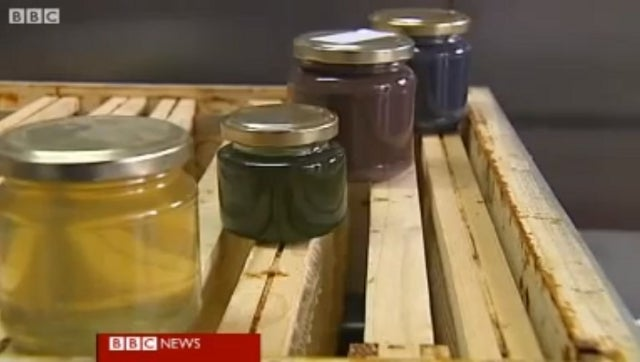 Colorful Honey Produced by French Bees Blamed on M&M's