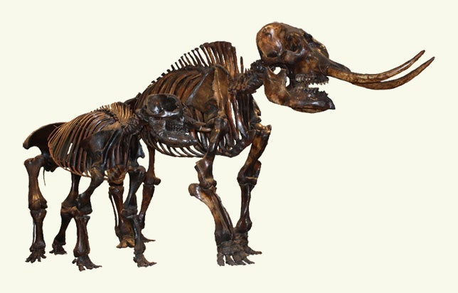 The La Brea Tar Pits Remind Us That Los Angeles is an Ancient City