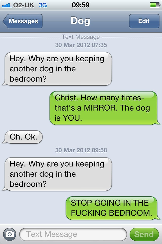 When we uplift dogs, these are the text messages they'll send