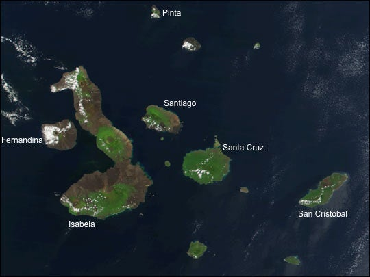 The Life and Death of a Volcanic Island