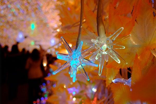 Tokyo Xmas Light Shows Overload Senses, Power Grid