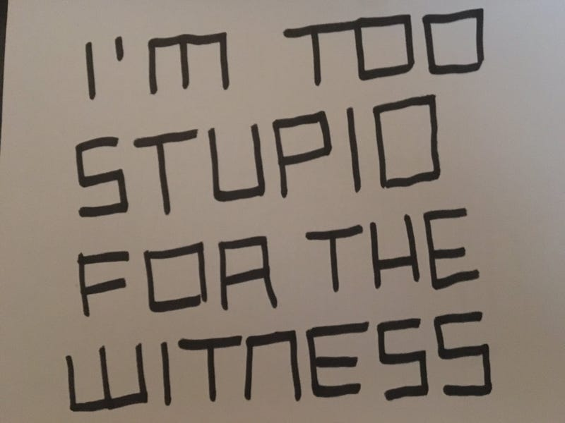 The Weird Things People Do While Playing The Witness