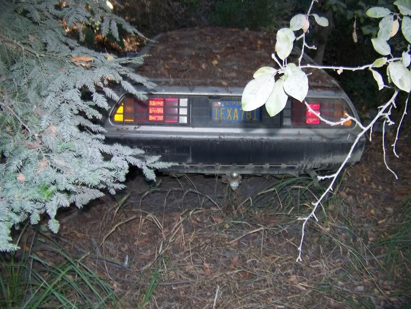 The abandoned DeLorean in the woods