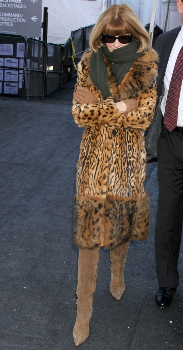 Behold Anna Wintour, Crazy Cat Lady