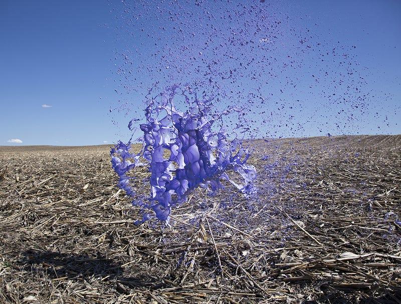 Liquid Sculptures Highlight the Beauty in Fluid Dynamics