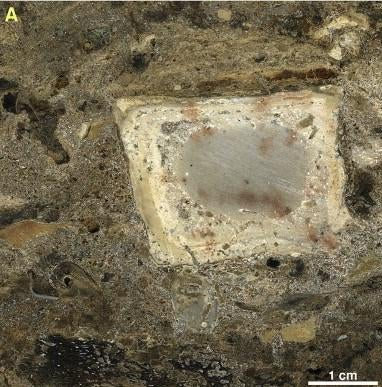 Archaeologists Uncover 300,000-Year-Old Kitchen in Israeli Cave