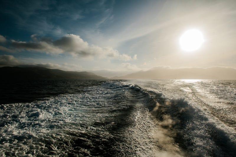 Adventure: Trans-Catalina Island Trail