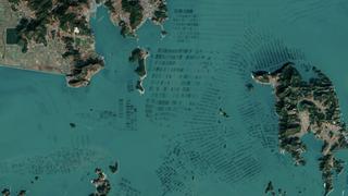 Beautiful NASA satellite photos reveal South Korea's seaweed farms