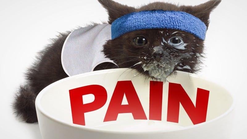 Let's Talk About Pain