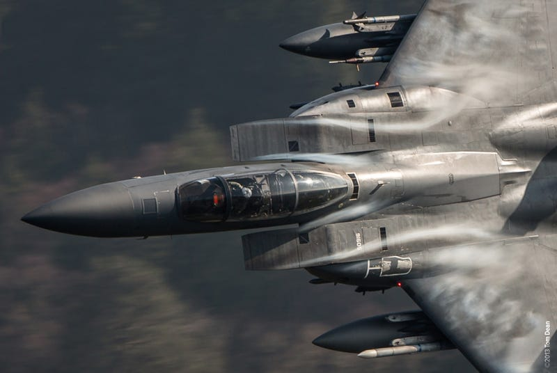Amazing close-up photos capture war planes and birds' majesty in motion