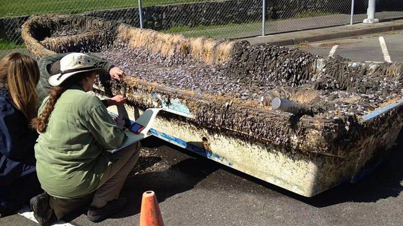 Japanese High School Tsunami Boat Recovered Through Facebook