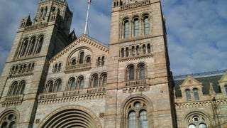 Is the Natural History Museum as Inaccurate as Jurassic World?