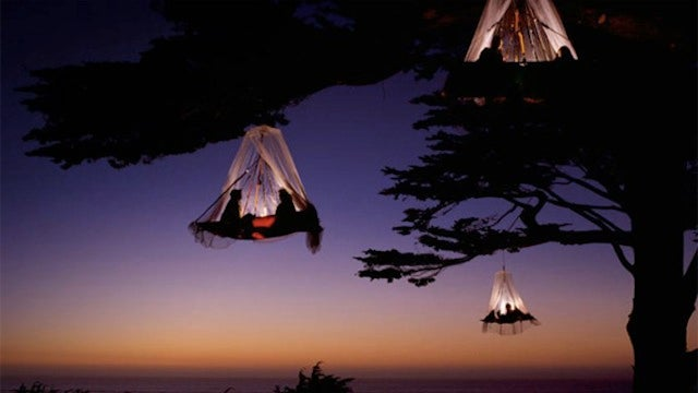 Would You Sleep in a Floating Tent Hanging Off a Tree?