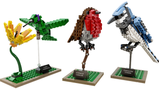 First images of the beautiful new Lego Birds set