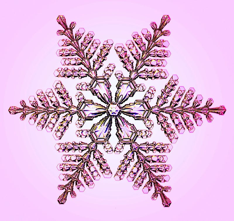 This Physicist's Designer Snowflakes Are Dazzling