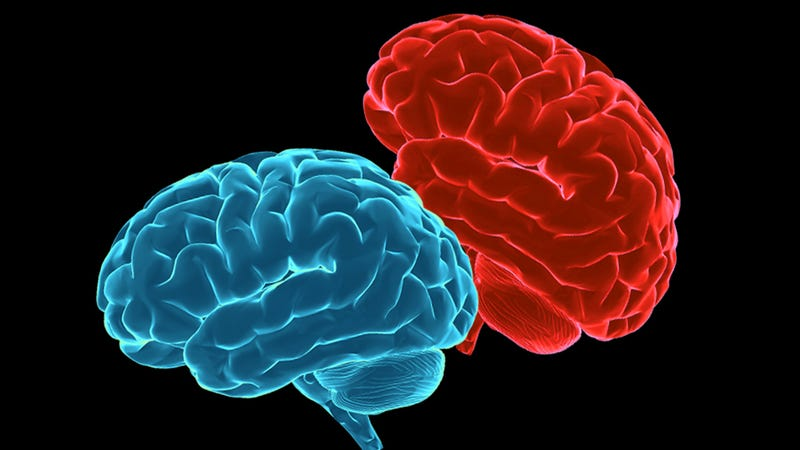Fucking With Your Head: 10 Things You Might Not Know About Your Brain and Sex
