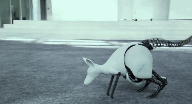 Somebody Built a Kangaroo Robot Because Why the Hell Not?