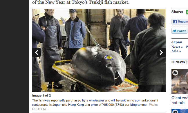 Want to Eat Some $400,000 Tuna?